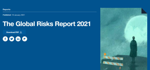 WEF Global Risks Report 2021